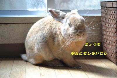 004_20121019165812.jpg