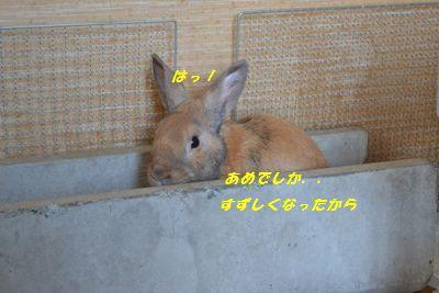 005_20120923142919.jpg