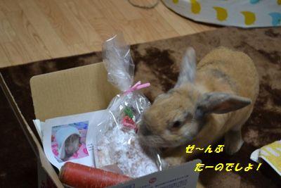 006_20121211192238.jpg