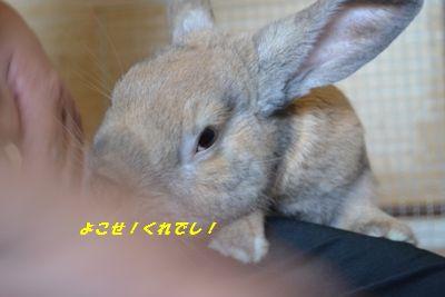010_20120819145748.jpg