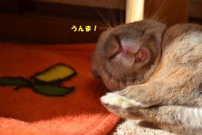 017_201401201116407da.jpg