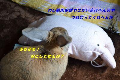 020_20121211192104.jpg