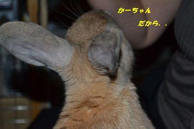 023_20120911160539.jpg