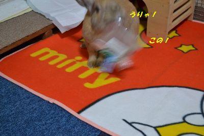 038_20121023115415.jpg