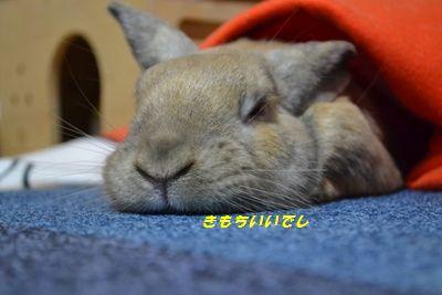 052_20121015122544.jpg
