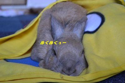 056_20121026182641.jpg
