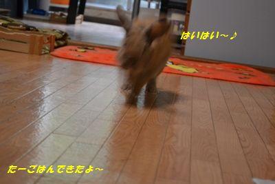 072_20121026182716.jpg