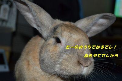 089_20120802194232.jpg