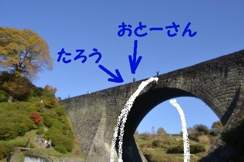 2_20121120235233.jpg