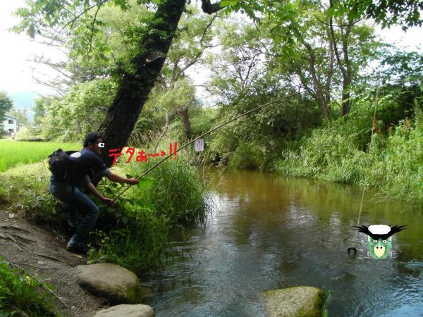 SANY00881-002_convert_20120727124054.jpg