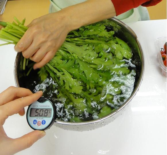 水菜洗い1