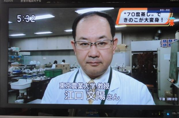 tokyonodai2.jpg