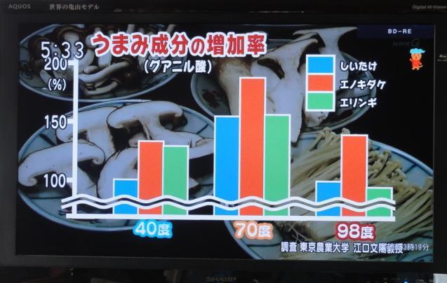 tokyonodai5.jpg