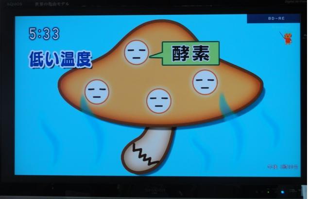 tokyonodai6.jpg