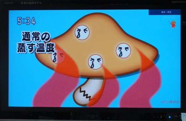 tokyonodai7.jpg