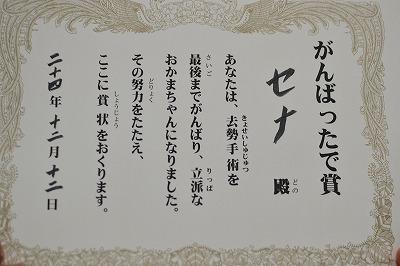DSC_0521_20121212192954.jpg