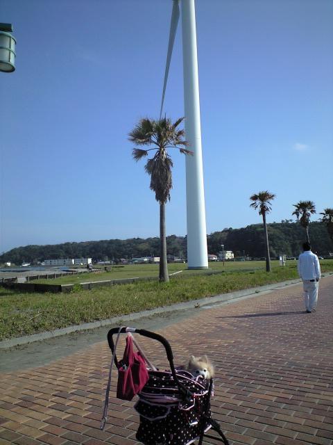 CA3A0521-2012-04-28.jpg