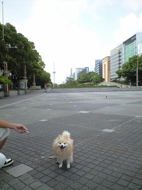 CA3A0599001-2012-09-11.jpg