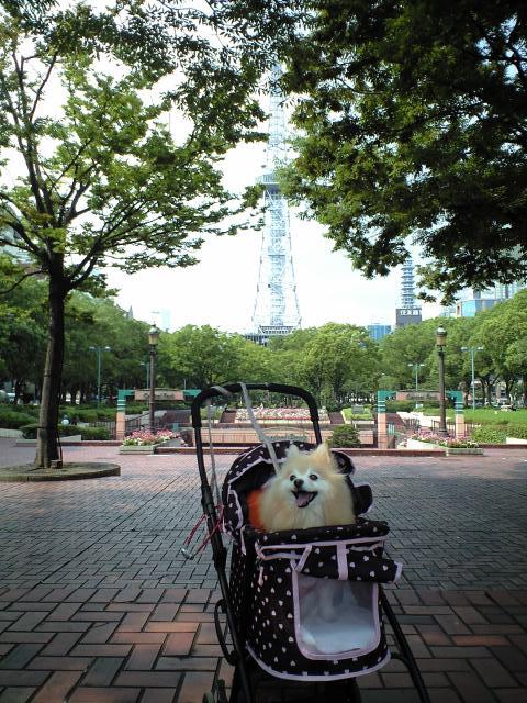 CA3A0606001-2012-09-11.jpg