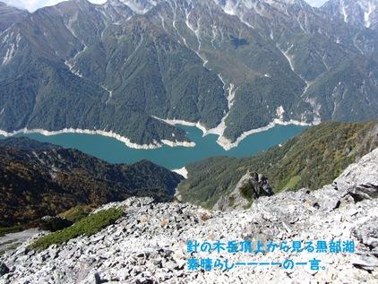頂上から望む黒部ダム湖