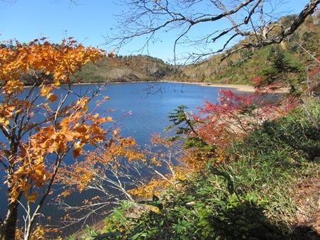 見事な紅葉に包まれた風吹大池