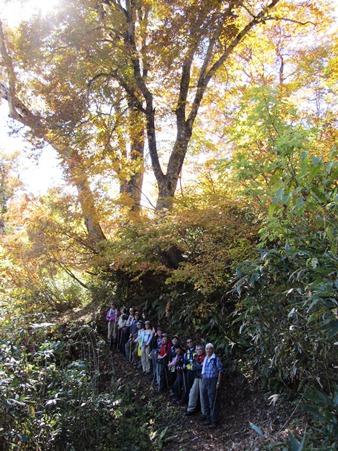 紅葉が進む風吹大池への登山道にて