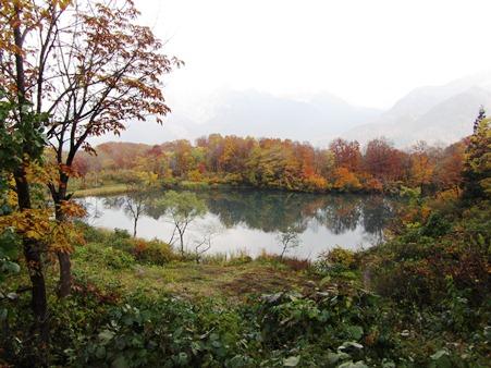 11.9昼食をとった白池、ここも紅葉が素晴らしい