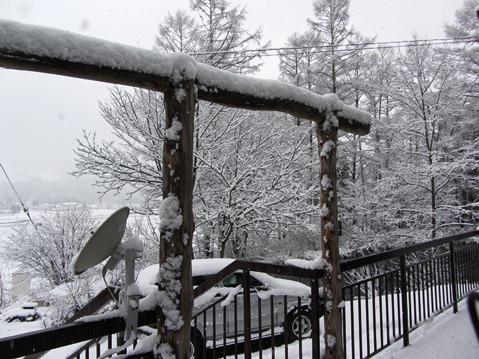 11.27里山に2度目の雪が