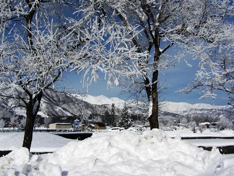 12月14日樹氷と白馬三山