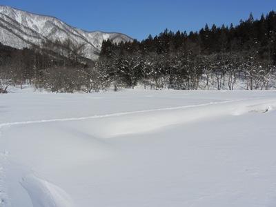 厳冬の親海湿原2