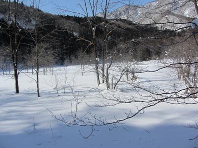 厳冬の親海湿原4