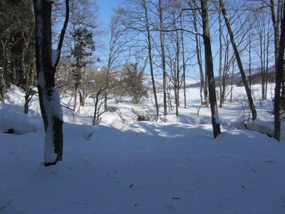 厳冬の姫川源流、どこが源流やネンといった感じですが