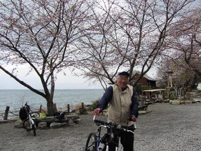 16近江八幡・琵琶湖水が浜までバイクラン・あと数日で満開かな