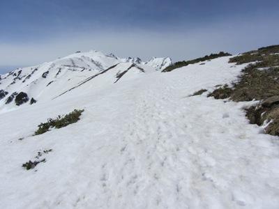 八方池トレッキング2真直ぐ雪原を