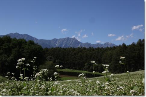 中山高原から見える鹿島槍ヶ岳・爺が岳の北アルプス連峰