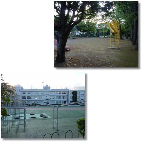 11-16-2.jpg