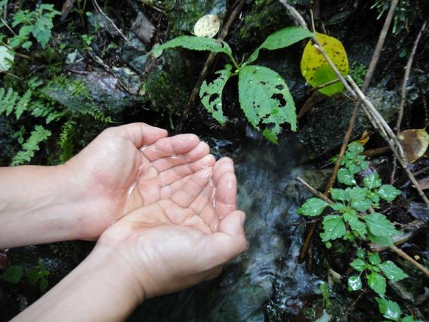 白石沢水源