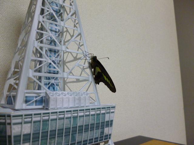 テレビ塔13