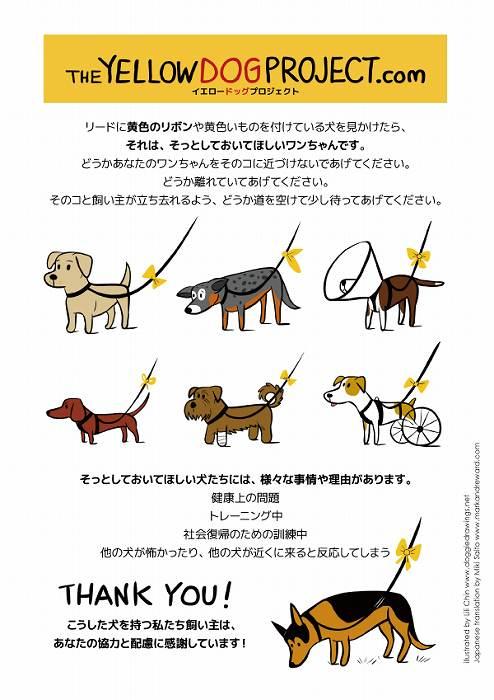 yellowdogproject-jpn-a4.jpg