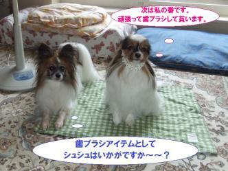 08-10_20120810075457.jpg