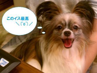 10-04_20120910113143.jpg
