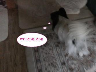 18-02_20121018123725.jpg