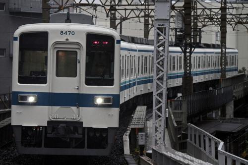 26721117-fukuro