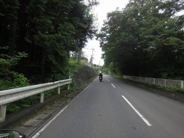 2012-07-080003.jpg