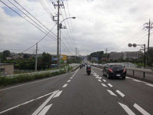 2012-07-080028.jpg