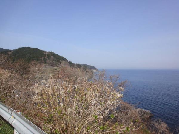 2012東北0316