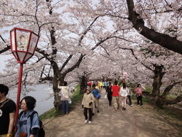 2012東北0393