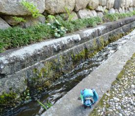 初音谷から取水された用水路です