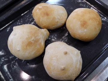 小麦酵母パン