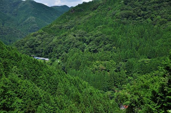 2012年8月24日 JR西日本木次線 出雲坂根 12系スハフ13-801+スハフ12-801+DE15-2558
